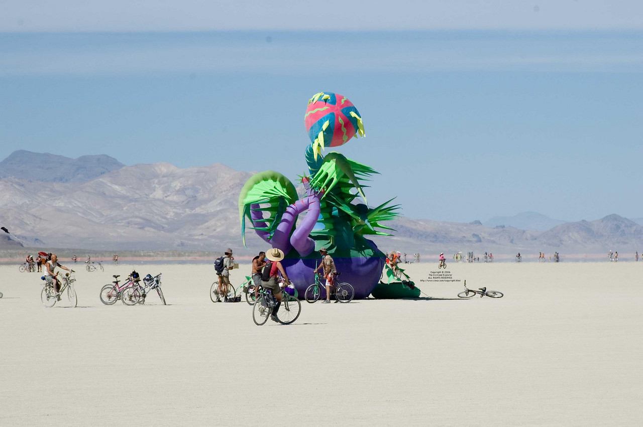 "The Venus Eyetrap by Luke Egan and Pete Hamilton.<br /> <br /> <a href=""http://www.burningman.com/installations/06_art_grant.html#venus"">http://www.burningman.com/installations/06_art_grant.html#venus</a>"