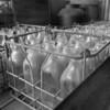 Milk bottles in the old milk truck.