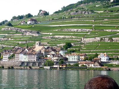 the vineyards along lake of Geneva