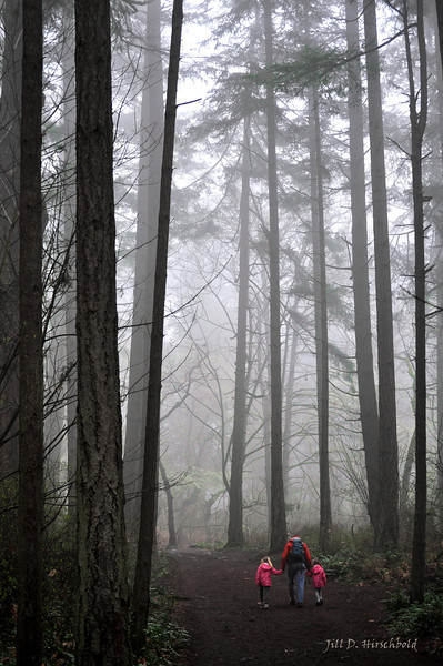 "Teach Our Children Well<br /> <br /> This photograph of my husband and daughters was taken, on a foggy February morning, on one of our weekend hikes.  As they walked ahead of me I was struck by how small they seemed in relationship to the forest and tried to capture a sense of that comparison.  <br /> <br /> For us, quality family time is spent exploring the outdoors.  We believe it is important to teach our children about the natural sciences, in a fun adventurous way, so they will come to understand their place in the cycle of life. If they can truly understand how everything from to the trees, to the sky, to the sea is connected, we hope they will realize how vital it is to preserve our natural spaces.  <br /> <br /> The photo name was inspired by the lyrics of the Crosby, Stills, Nash and Young song – Teach Your Children.<br /> <br /> <br /> <br /> Teach Our Children Well<br /> CBC Nature of Things 2011 Photo Contest Finalist <br /> Category - Your Habitat <br />  <a href=""http://www.cbc.ca/natureofthings/episode/nature-in-focus-photography-competition-winners-2010.html"">http://www.cbc.ca/natureofthings/episode/nature-in-focus-photography-competition-winners-2010.html</a>"
