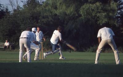 CCL vs Domino Print Cricket 1984