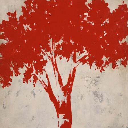 Redwood-Day-Edmunds,60x60