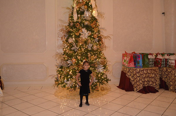 CHRISTMAS PARTY 12-15-2013