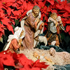 J.S.CARRAS/THE RECORD Nativity scene during Christmas Mass at St Anthony of Padua Shrine/Parish Tuesday, December 24, 2013 in Troy, N.Y..