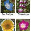 Native Plant Week - bookmark side 2
