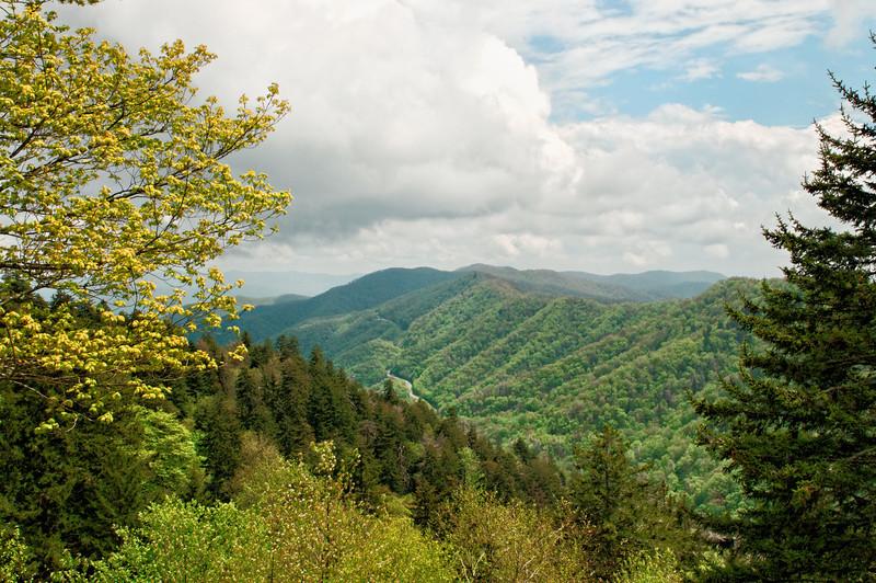 GSMNP View