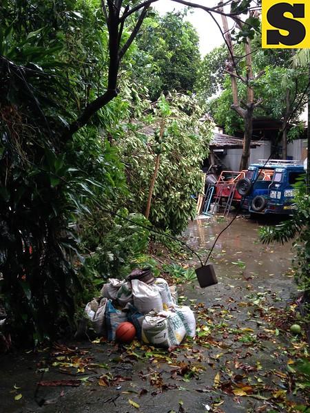 CEBU CITY. Damage caused by Typhoon Yolanda at Singson village, Barangay Guadalupe. (Jean Mondoñedo-Ynot/Sunnex)