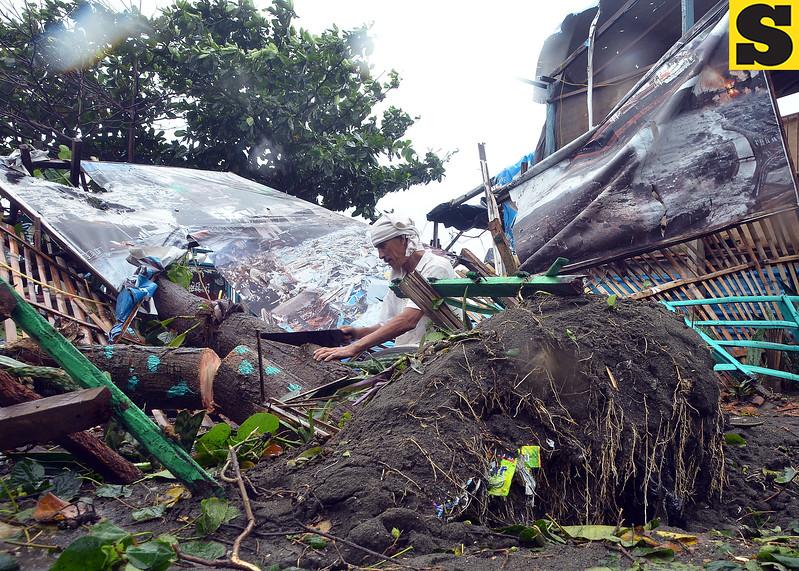 GIPUTOL ni Ben Elicana ang kahoy duol sa Barangay Hall sa Barangay 76-A Bucana, siyudad sa Davao tungod sa kusog nga hangin kagahapon sa buntag. Nahagsa sab ang tarpaulin nga puno sa hulagway sa mga biktima sa bagyong Sendong sa miaging tuig nga mao untay pahimangno alang sa mga molupyo nga ampingan ang kinaiyahan. (Seth delos Reyes)