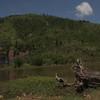 Green mountain six months after Typhoon Yolanda