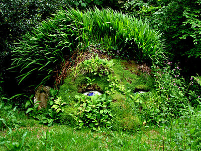The Giant's Head - Lost Gardens of Heligan, Cornwall.