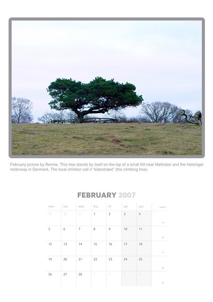 """February picture by Rennie: This tree stands by itself on the top of a small hill near Mølleåen and the Helsingør motorway in Denmark. The local children call it """"klatretræet"""" (the climbing tree). (Sony F717)"""