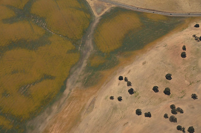 Calif. Coastal Flying Images