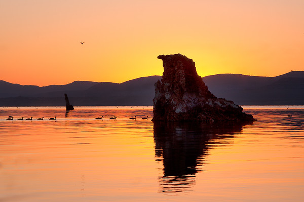 Mono Lake sunrise_