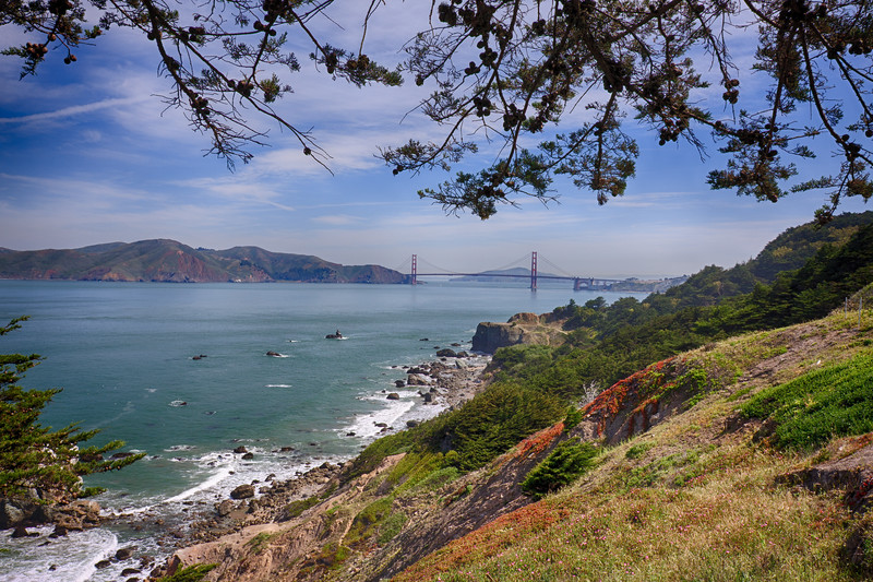 Lands End Trail, San Francisco
