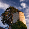 Old Palo Alto water tower and Cypress-1