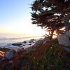 Big Sur sunset 2