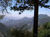 View from Sequoia National Park