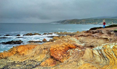 Foggy Morning at Montano de Oro 2 - iPhone HDR