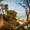 Hiking in Point Lobos (California)