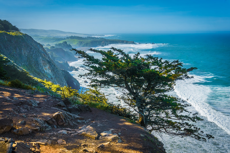 Travel Photography - Big Sur. California