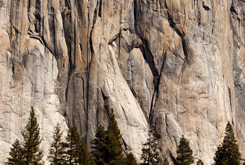 The inspiring cliff of El Capitan above the trees of the valley floor.