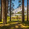 Travel_Photography_Blog_California_Yosemite_Cooks_Medow_View
