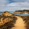 Travel_Photography_Blog_California_Point_Lobos_Sea_Lion_Point_Trail_FULL
