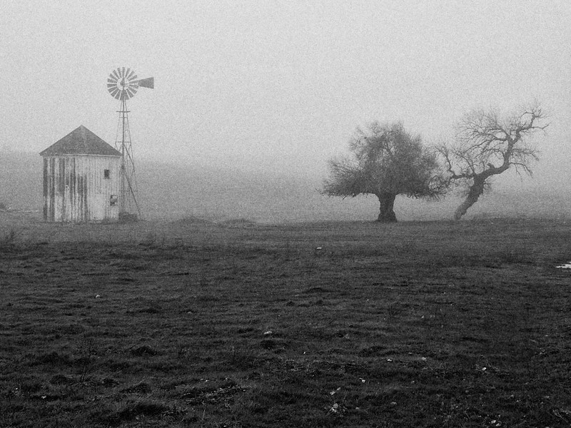 Fog surrounding an old ranch near Milton California
