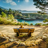 Bench with the View (Point Lobos)