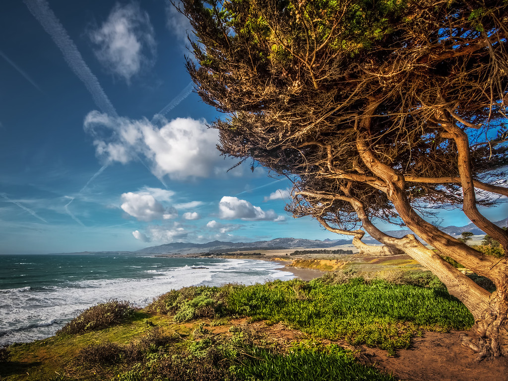 Big Sur California – Places to See and Photograph 9