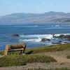 California. Cambria area. Jan. - April 2008
