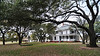 The Pin Oak Bed & Breakfast - surrounded by this huge old trees.  A lovely, peaceful place.