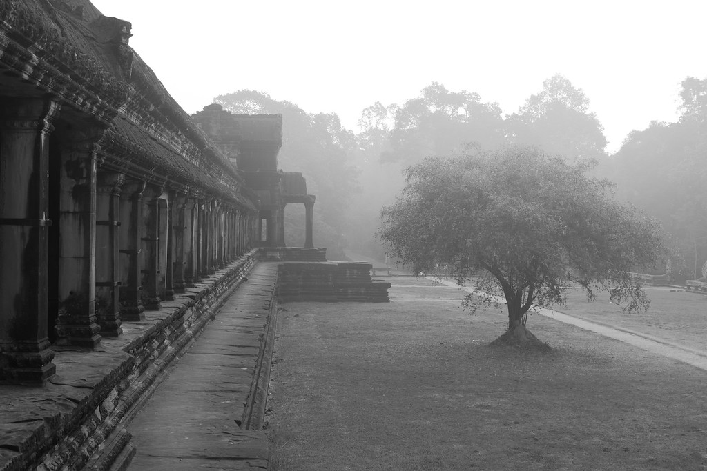 Misty morning at Angkor Wat