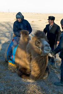 First person to ride the camel