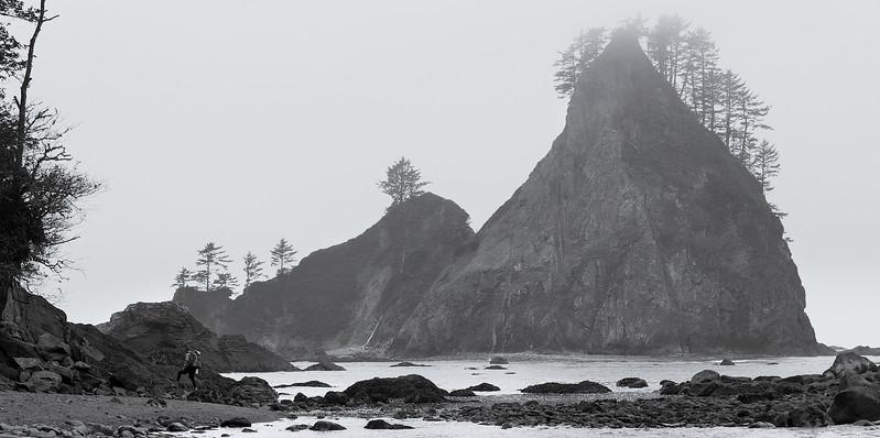 Exploring the Coast of Washington State