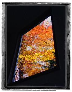 Kemp Mooney Design - Fall Window in Atlanta