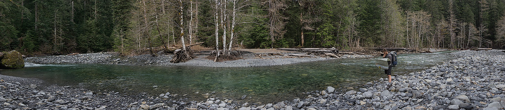 Backpacking on the North Fork Quinault - Washington