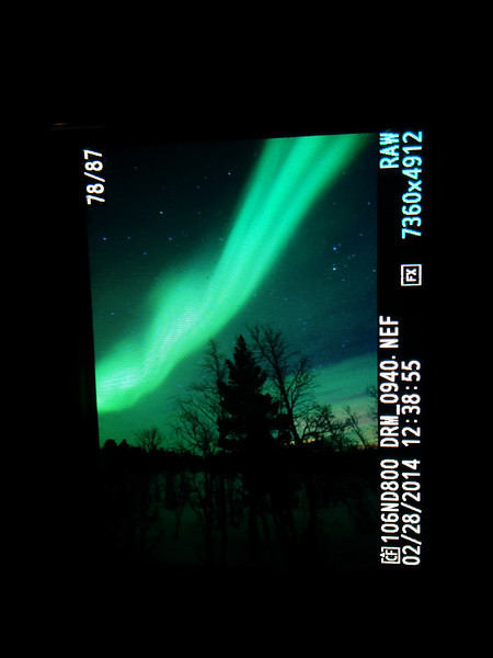 My first time seeing the Aurora! Just awesome:)