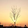 Hazzy sunset
