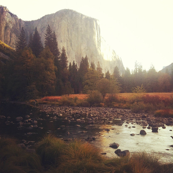 One of the best places in the world, YOSEMITE!