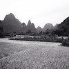 Did some exploring in the rice fields near Yangshuo @ sunset.