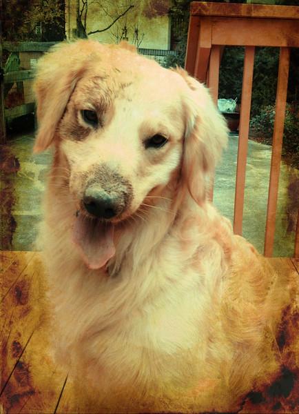 Muddy Arthur