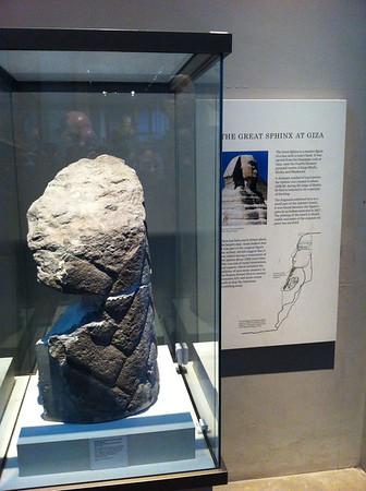 Sphinxs' Beard - British Musuem London