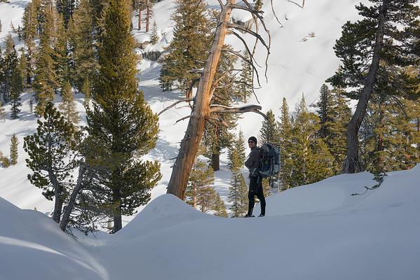 Snowshoeing in the Sierra Nevada Range