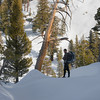 Snowshoeing in the Sierra Nevada Range