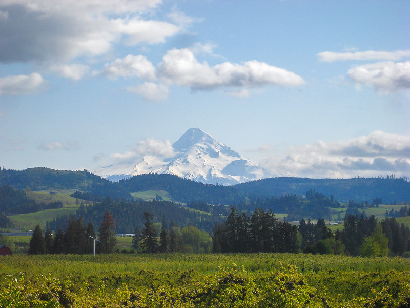 Driving Through Northern Oregon's Hood River