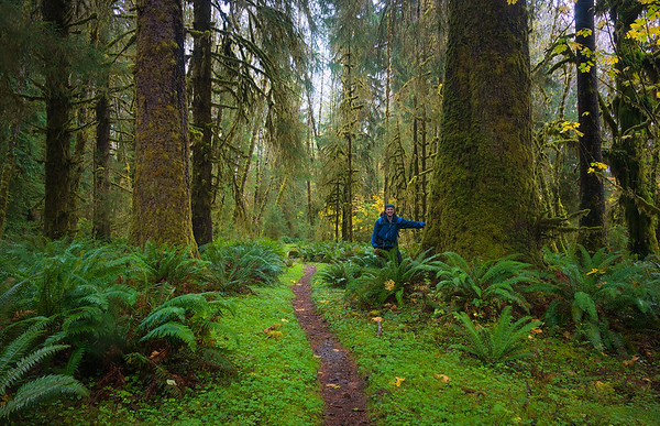 From a Solo Backpacking Trip to My Favorite Place on Earth - Olympic National Park