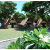 Our Camp Koru cabins