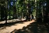 Camping-8-2010_RAW001