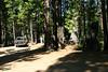 Camping-8-2010_RAW004